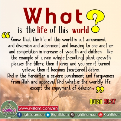 What is the life of this world ?