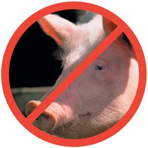 comer muslim - para el islam aquellos que beben alcohol son similares a los que adoran ídolos lo que  la religión musulmana prohibe comer carne de cerdo porque se alimenta de.